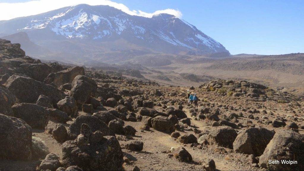 On a trail to Kilimanjaro